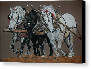 Horse Drawings Limited Time Promotions