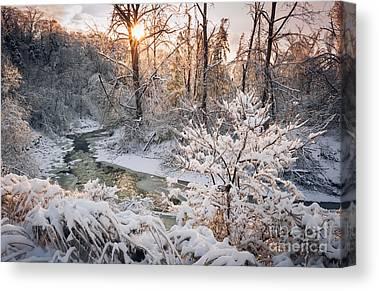 Snowy Brook Canvas Prints