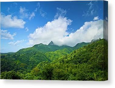 El Yunque National Forest Canvas Prints