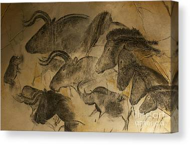 Extinct Canvas Prints
