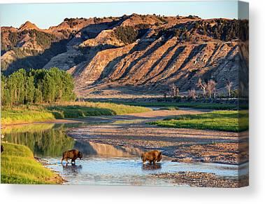 North Dakota Badlands Canvas Prints