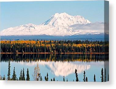 Schnee Canvas Prints