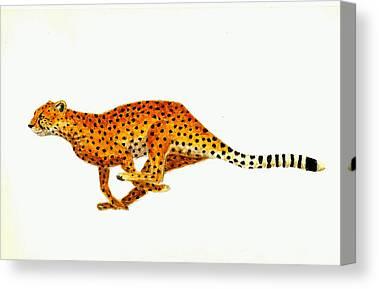 Cheetahs Canvas Prints