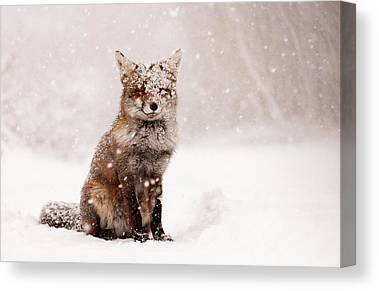 Winter Storm Canvas Prints