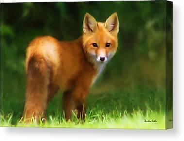 Fox Kit Mixed Media Canvas Prints