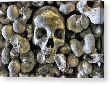 Bone Yard Canvas Prints