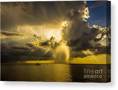 Tampa Bay Rays Canvas Prints