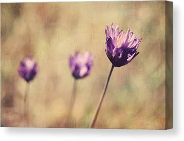 Textured Florals Digital Art Canvas Prints