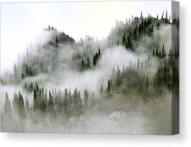 Morning Mist Images Canvas Prints