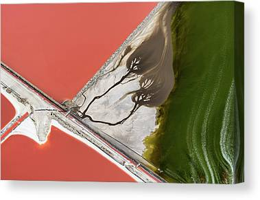 Salt Pond Canvas Prints