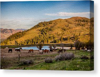 Methow Valley Paintings Canvas Prints