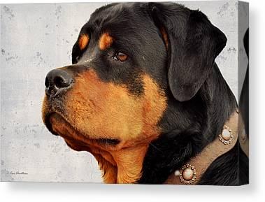 Working Dog Mixed Media Canvas Prints