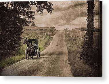 Horse And Buggy Canvas Prints