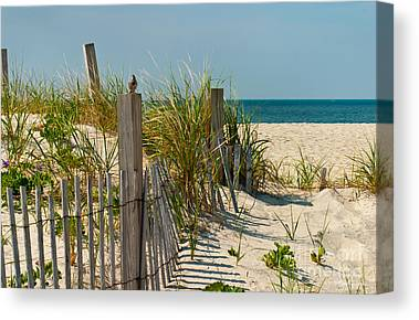 Sand Dunes Canvas Prints
