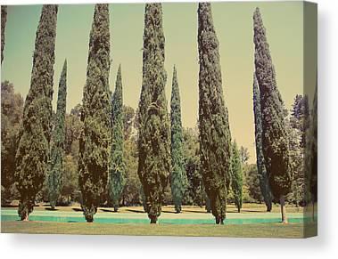 Redwood City Canvas Prints