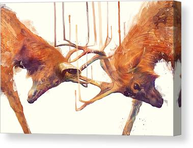Deer Canvas Prints