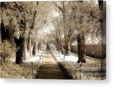 Surreal Infrared Sepia Nature Canvas Prints