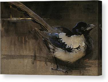 Magpies Canvas Prints