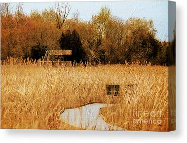 Canadian Marsh Canvas Prints