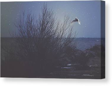 Snowy Night Photographs Canvas Prints