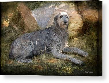 Giant Dogs Canvas Prints
