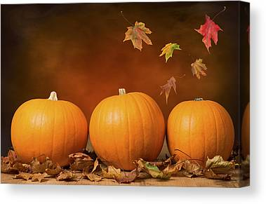Pumpkins Canvas Prints