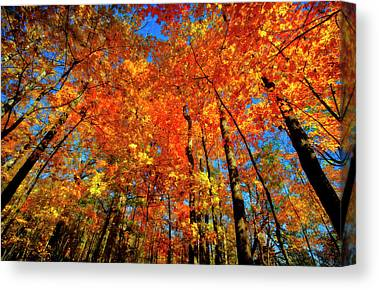 Indiana Landscapes Canvas Prints
