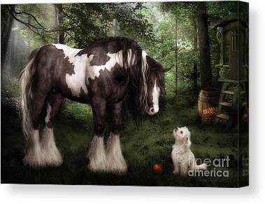 Gypsy Vanner Canvas Prints