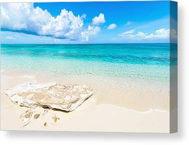 White Sands Canvas Prints