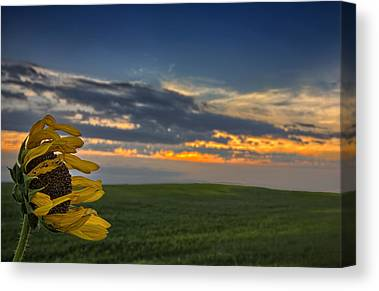 Prairie Sunset Canvas Prints