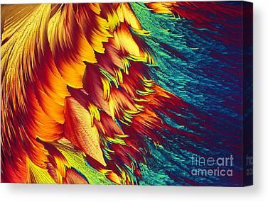 Intracellular Energy Canvas Prints