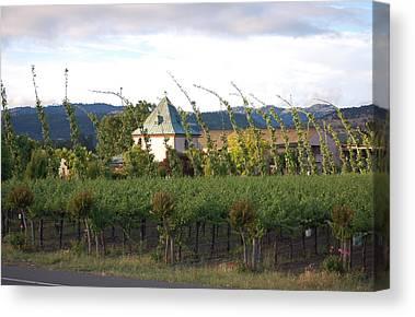 Blowing Grape Vines Vineyards Rustic House Winery Napa California Ca Wine Canvas Prints