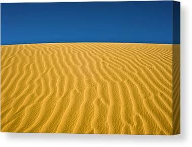 Negev Desert Canvas Prints