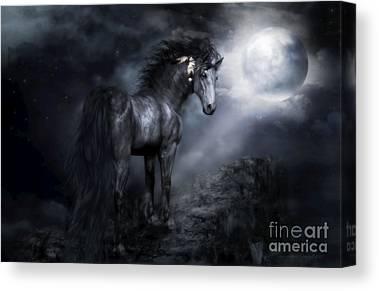 Moonshadow Canvas Prints