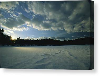 Walden Pond State Reservation Canvas Prints