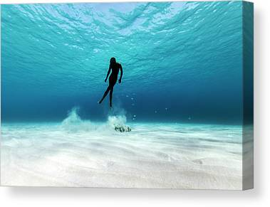 Dive Canvas Prints
