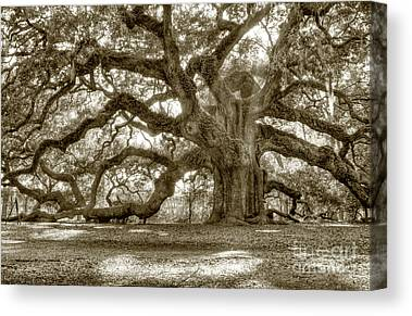 Southern Photographs Canvas Prints