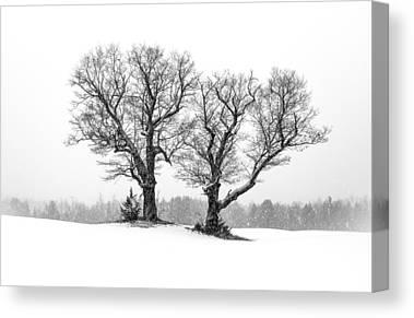 Maine Winter Photographs Canvas Prints