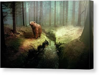Bears Canvas Prints