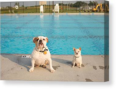 Swimming Pool Canvas Prints