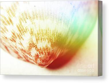 Iridescence Canvas Prints