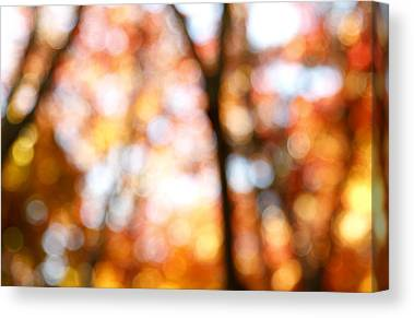 Abstract In Nature Canvas Prints