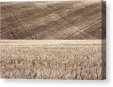 Crop Rotation Canvas Prints