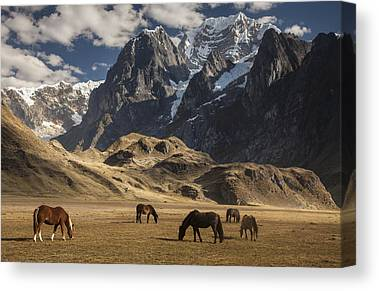 Andes Mountains Canvas Prints