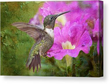 Hummingbird And Pink Flowers Canvas Prints