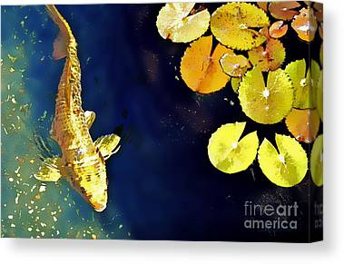 Koi Pond Digital Art Canvas Prints