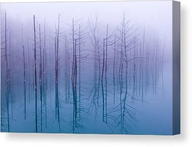 Fod Canvas Prints