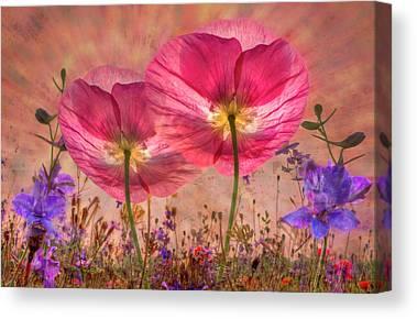Pretty Pink Poppy Macro Canvas Prints
