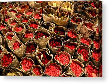 Roses Photographs Canvas Prints