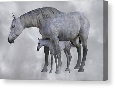 Forelock Digital Art Canvas Prints